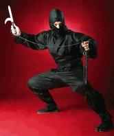 ninja-pict-red.jpg