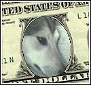 stella_dollar.jpg